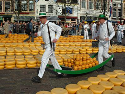 Houthandel Alkmaar en omgeving